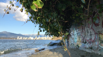 Downtown Vancouver Skyline from Kitsilano - Nicole Fu